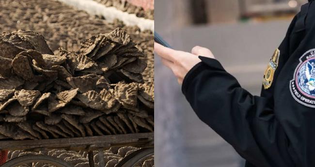യുഎസിലെത്തിയ ഇന്ത്യക്കാരന്റെ ബാഗിൽ ചാണകവറളി; പിടികൂടി നശിപ്പിച്ച് കസ്റ്റംസ്