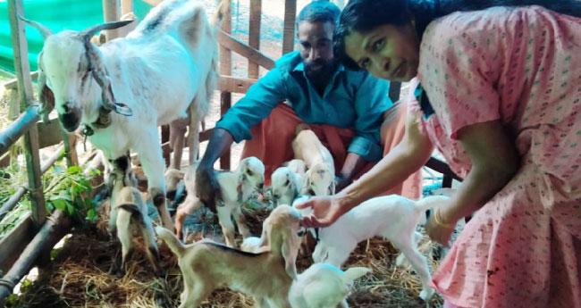 അമ്മുക്കുട്ടിക്ക് കണ്മണികൾ ഏഴ് ;  സലിയും കുടുംബവും ഹാപ്പി