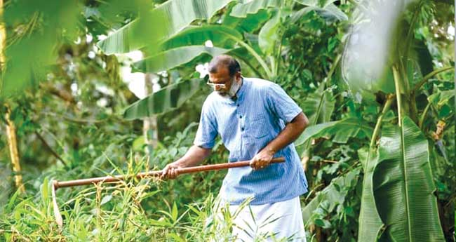 അധ്വാനം ആരാധനയാക്കിയ മേല്പ്പട്ടക്കാരന്