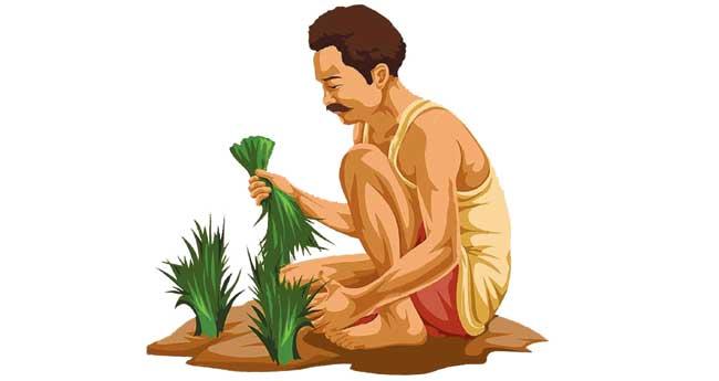 ചെറുകിട- നാമമാത്ര കര്ഷകരും കൃഷിയും