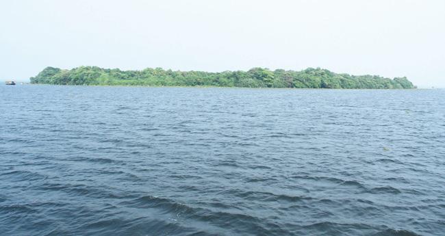 മരണഭീതിയിൽ വേന്പനാട് കായൽ