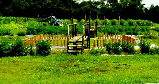 വരൂ....  പാസെടുത്തു സിൽക്കിലെ ഹരിതോത്സവം കാണാം